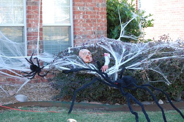 Man-eating Spider | Flickr - Photo Sharing!