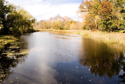 blue green fall nature water gold nikon d40 valkill d40x