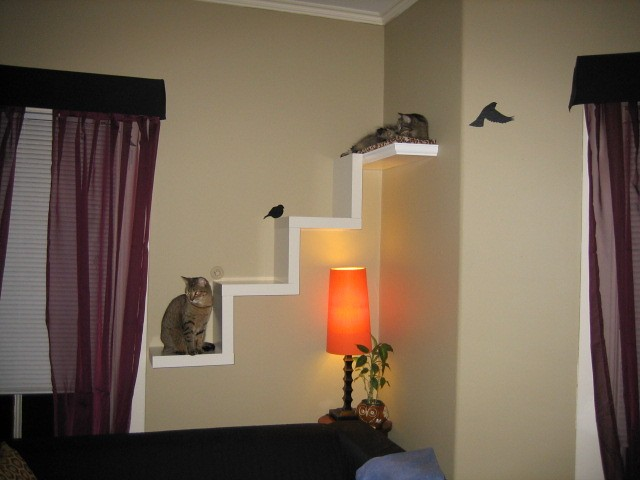 Ikea lack shelf made into cat furniture flickr photo sharing - Modern cat tree ikea ...