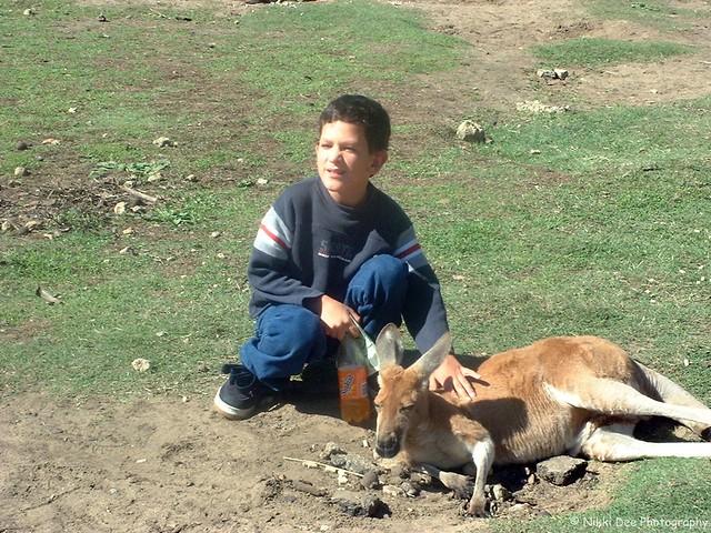 Ashley & Kangaroo