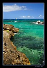 Fancy a swim? - Mexico's Caribbean Coast