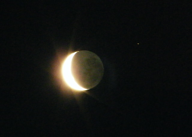 Pictures Of Crescent Moon And Cat