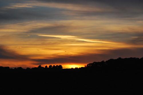 sunset d60