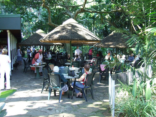 The Durban Botanical Gardens