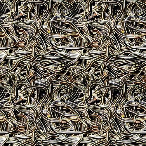 snake pattern 100/100 cm | Flickr - Photo Sharing!