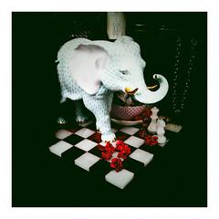 Elephant Chess