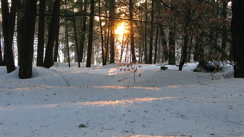 sunset snow woods vermont sundown glaze randolphcenter canong9
