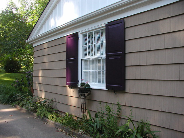 purple shutters flickr photo sharing