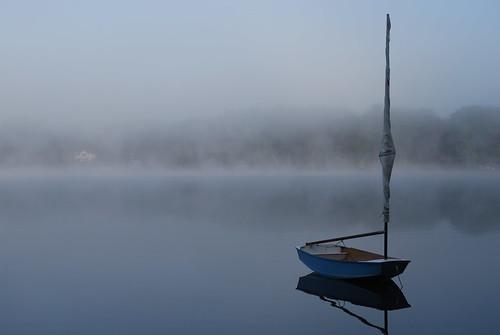 Foggy Morning (14)