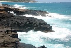Kauai 201