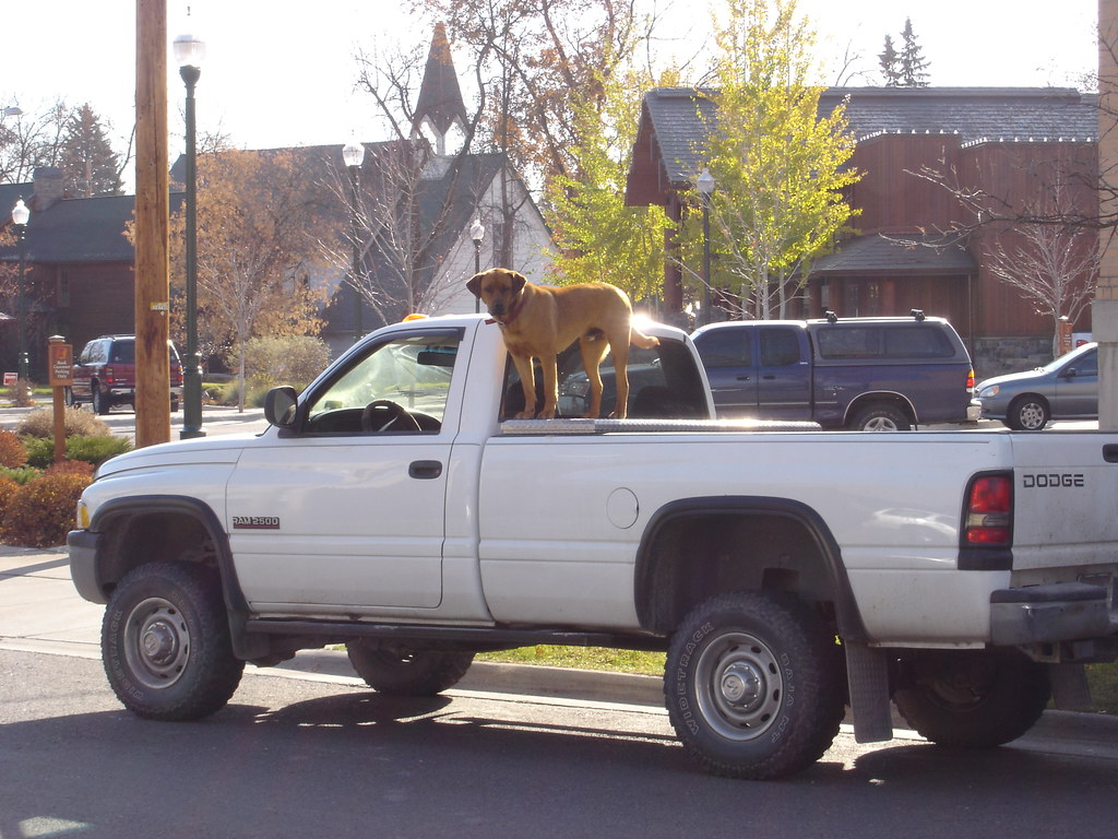 Standard mode of Montana transport