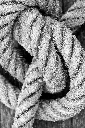 Rope Knot (_MG_5339)