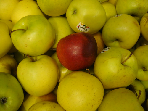 mushy apples, why apples are tasteless, bad apples, apples, climate change
