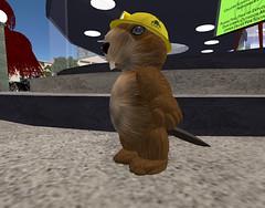 GAM---Ener-as-Beaver-Builder
