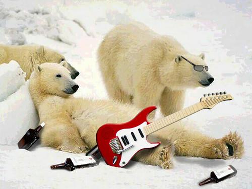 Bears in Rock