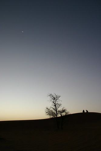 travel light shadow sky moon tree backlight composition sunrise dark dawn alba dune ombra luna cielo inspirational duna sole libya albero luce controluce libia libye akakus