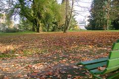 Jardín Botánico, Ginebra