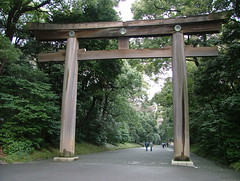shinto shrine, torii,