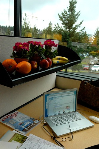 Macintosh laptop, glasses, cottage style magazine, supermouse, notes, flowers, fruit, Bellevue office building, Washington, USA by Wonderlane