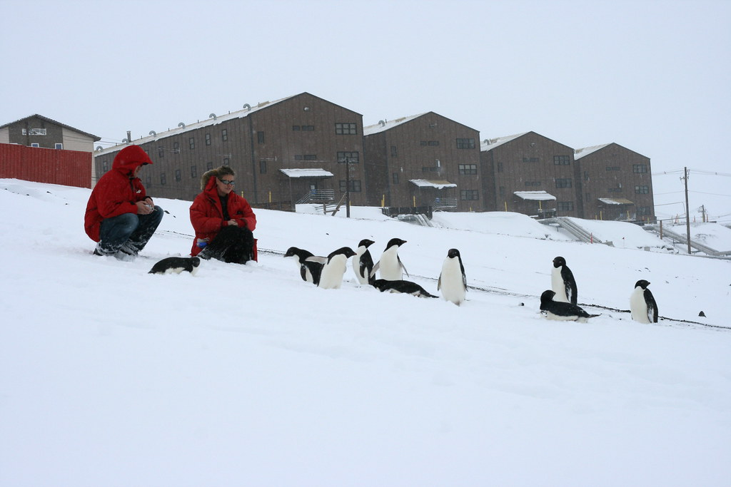 A New Tourist Destination: Antarctica Reachable by Passenger Jet