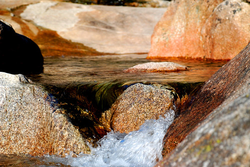 Detalle, Bassi Falls, El Dorado National Forest, California, 2008
