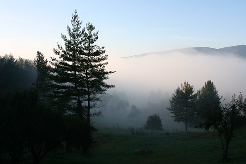 cloud sunlight mountain tree fog sunrise canon rebel virginia cabin low 24mm patchy elkcreek xti mywinners