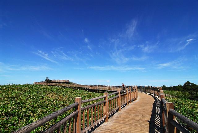 知床五湖展望台の風景