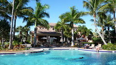 arecales, tropics, resort town, swimming pool, property, leisure, estate, vacation, resort,