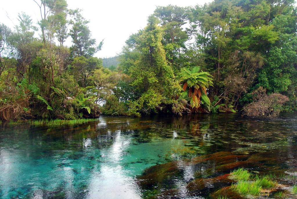 surreal landscape, pupu springs