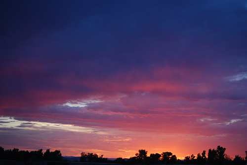 morning pink blue trees sunset red sky orange yellow clouds sunrise dawn evening colorado dusk horizon violet grandjunction