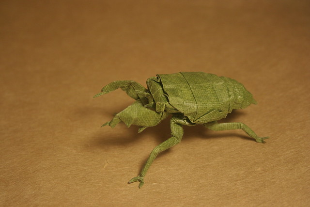 cicada nymph - photo #47