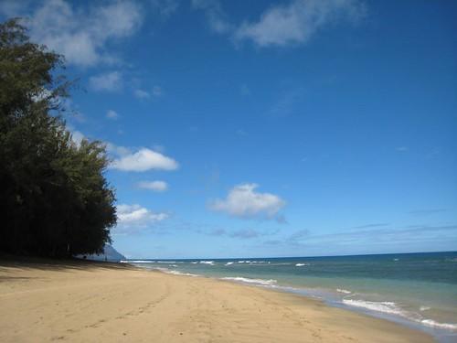 kauai IMG_5586