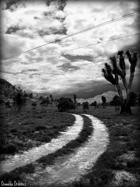 Camino incierto.