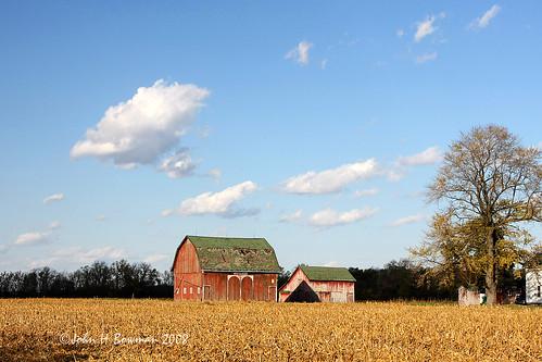 ohio october barns best 2008 weatheredwood soe redbarns blueribbonwinner farmsteads ohiobarns canon24105l lucascounty ruralohio takeitoutside goldstaraward october2008 jediphotographer derelictbarns