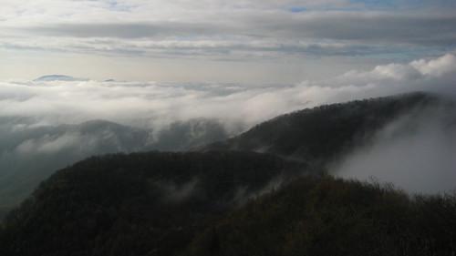 mist fog nc haze northcarolina trail carolina appalachian appalachiantrail thruhike