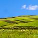 Sicilian Rural Villages by italianoadoravel .BACK ,,,,,,,,,,,,