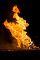 gas flare(0.0), explosion(0.0), bonfire(0.0), fire(1.0), flame(1.0),