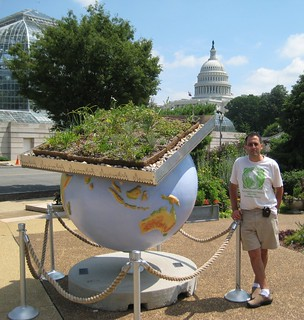 Cool Globe: Green roofs and dome 2