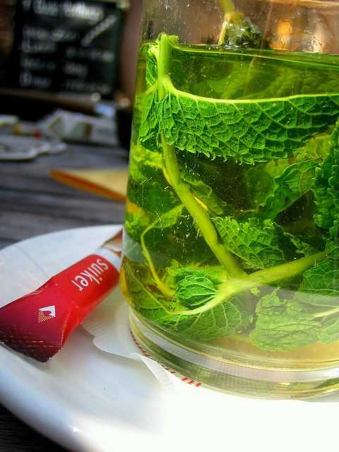 fresh mint tea | Flickr - Photo Sharing!