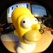 Fisheye Fun by John Biehler