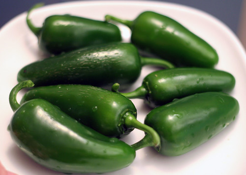 fresh jalapenos from my garden