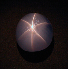 Star of India Sapphire Cabochon