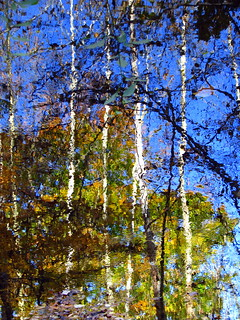 impressionist fall reflection