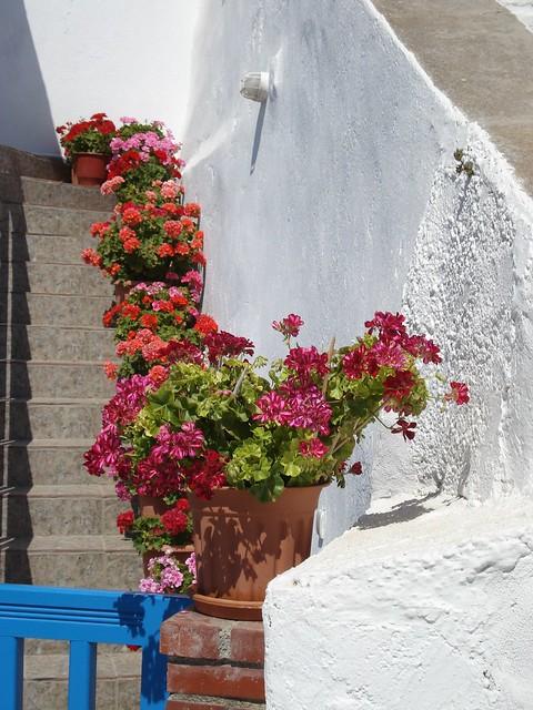 Skopelos por Jill Elliot