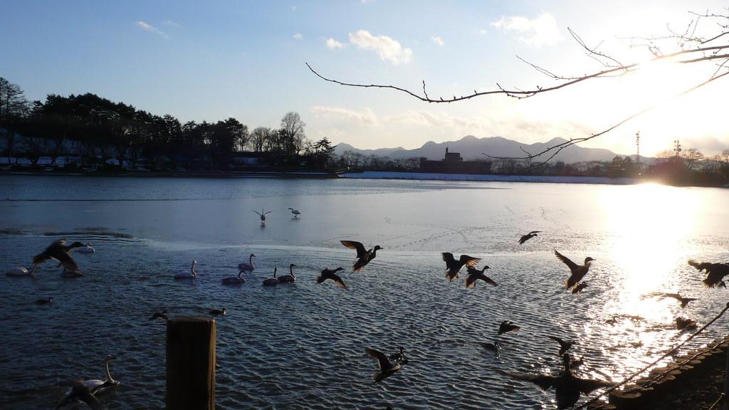 Pond Takamatsu-no-ike in Winter