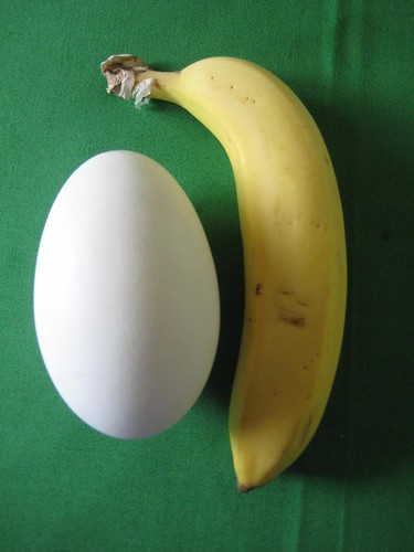 Banana and egg