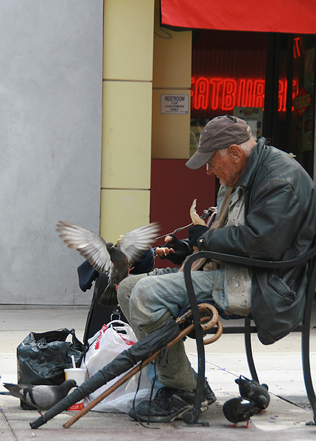 Homeless man feeding pigeons (Please read below)
