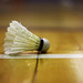 Badminton (33) by Dee'lite