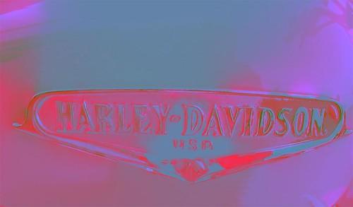 Harley-Davidson-flower.2