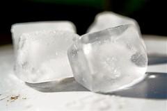 Frozen Ice Cubes IMG 1021